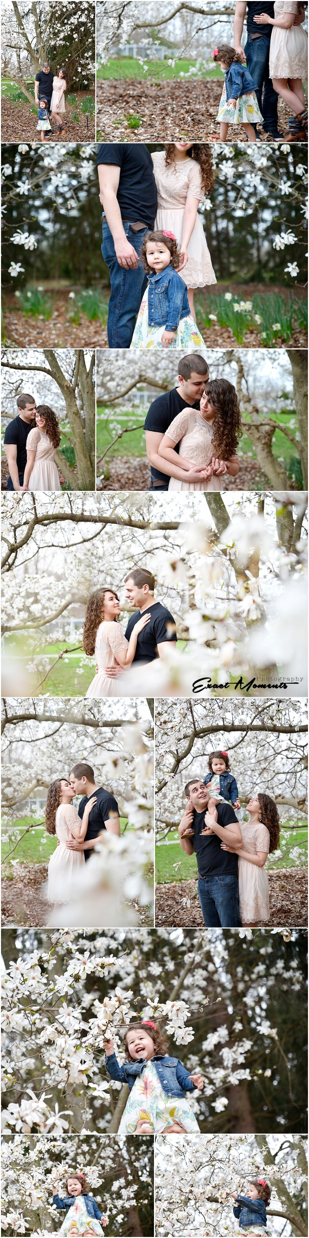 Engagement photos in Inniswood Metro Gardens