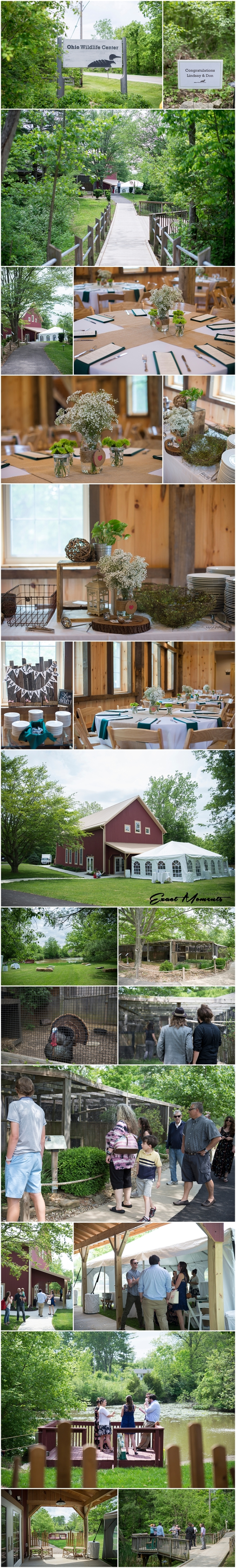 Ohio Wildlife Center Wedding Reception
